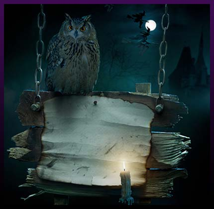 Dark magic spell owl